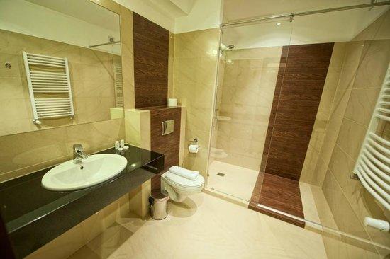 łazienka w pokoju. duża przestronna z prysznicem